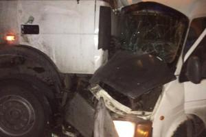 В Мелитополе из-за собаки произошло крупное ДТП