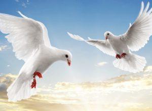 7 апреля православные празднуют Благовещение Пресвятой Богородицы