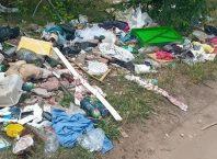 лесопарк мусор