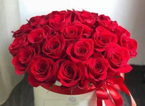 Доставка цветов и подарков в Мелитополе